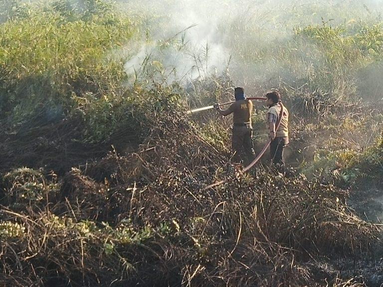 Kebakaran Hutan dan Lahan di Kalimantan Timur, Nasib Ibu Kota Negara?